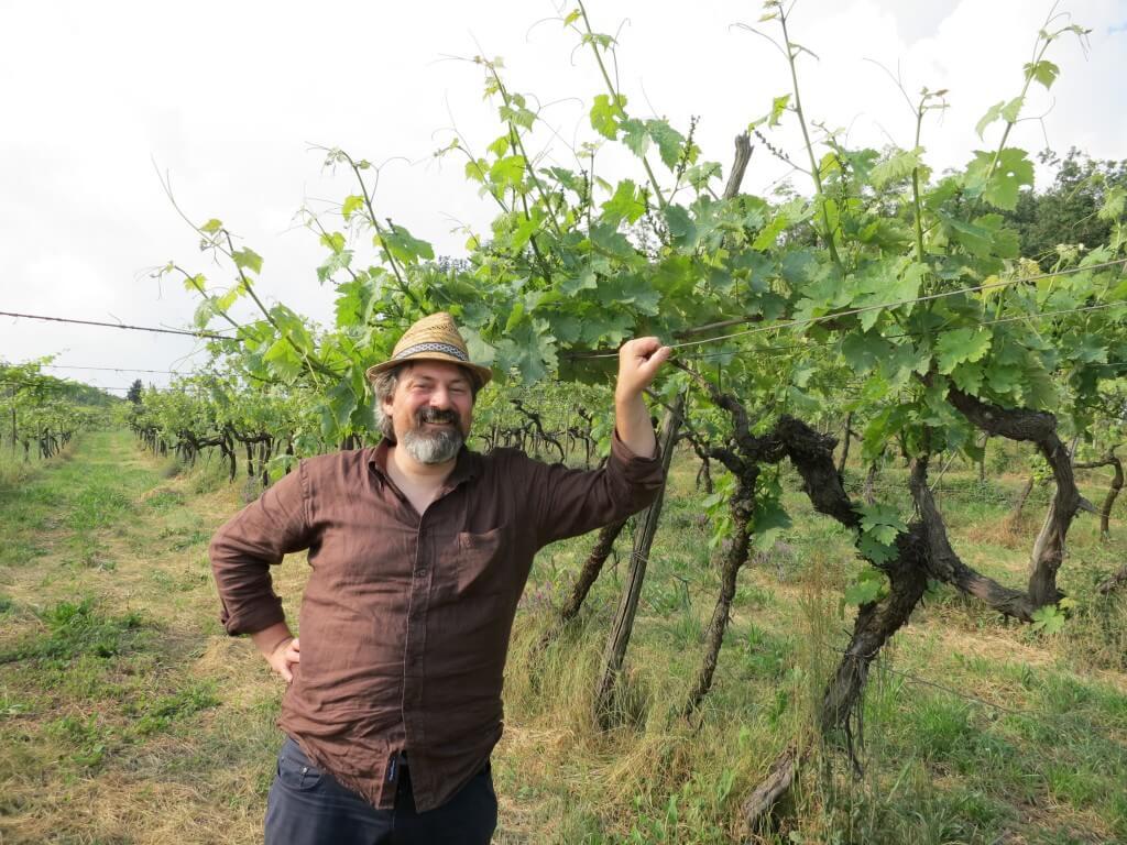 Weinregion Soave mit Winzer Filippo Filippi